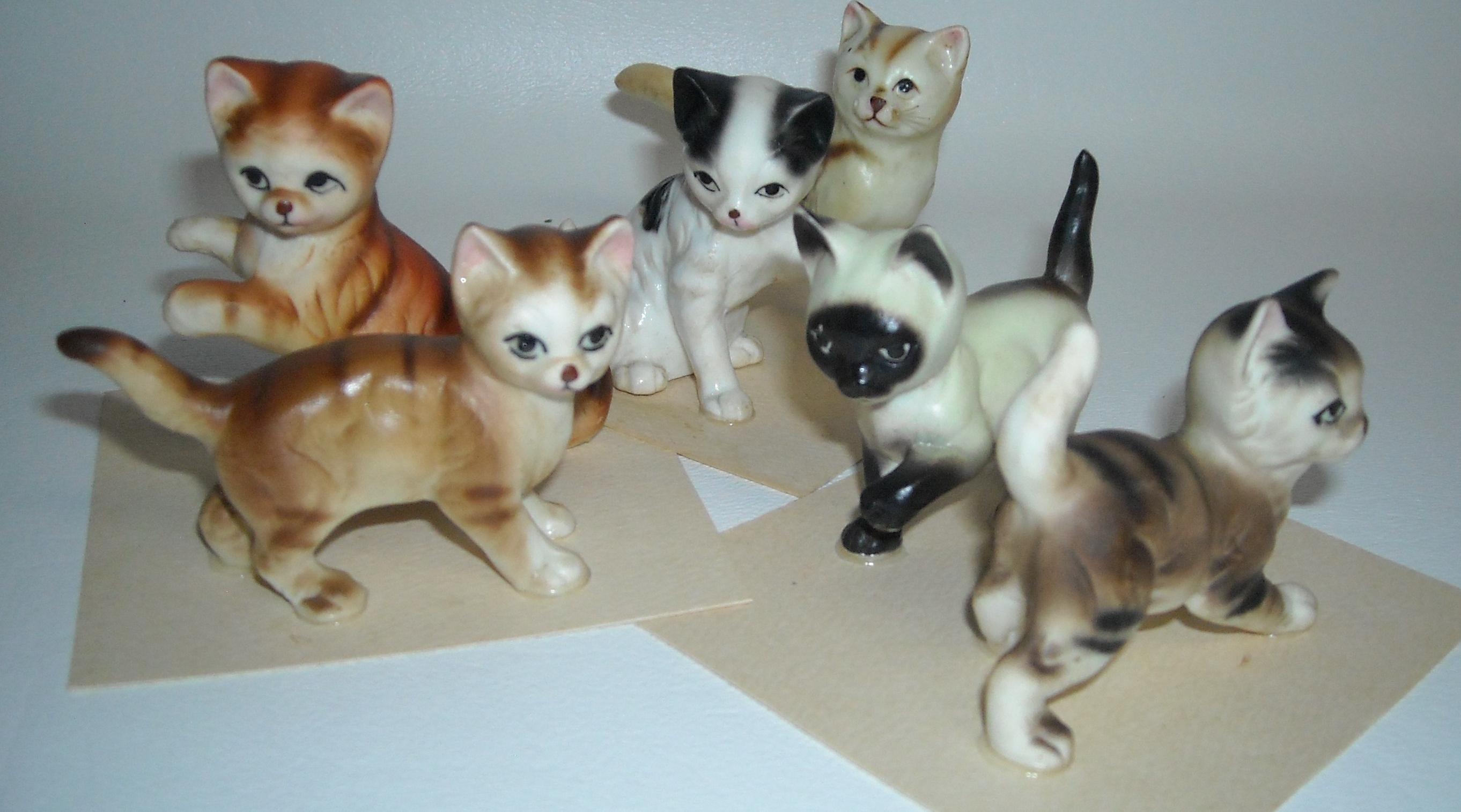 large-cats.jpg