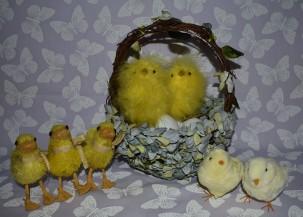 Modern chicks and ducks